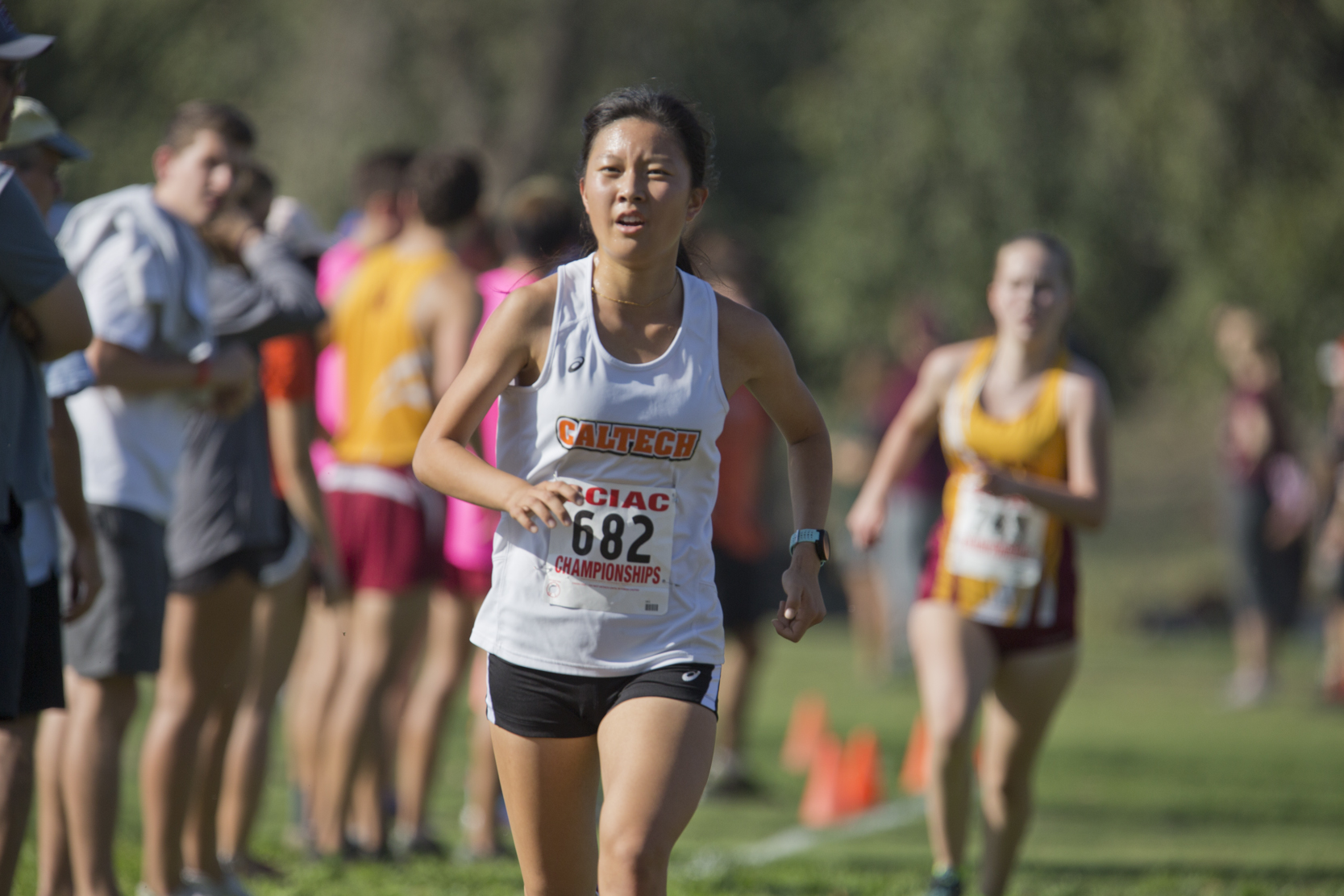 Women's XC Lowers Team Record Average at Riverside