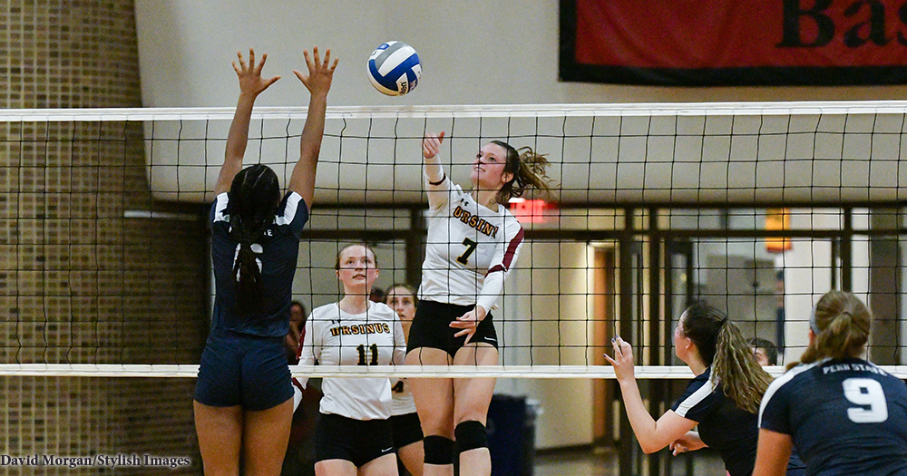 Volleyball Battles Tough in Loss to PSU-Berks
