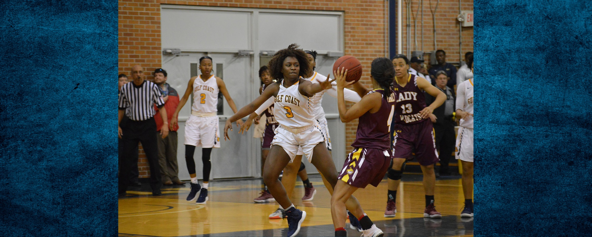 Lady Bulldogs lose to PRCC