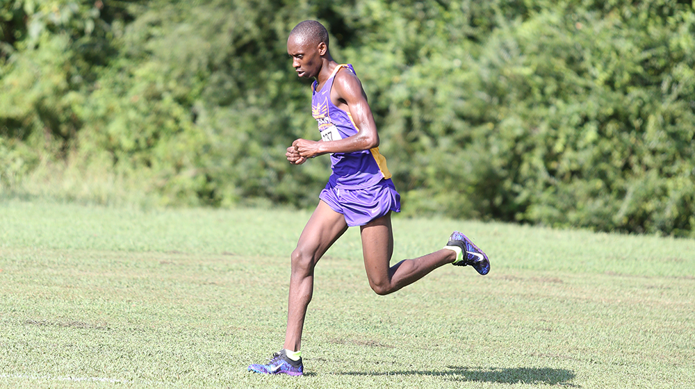 Boit anchors impressive showing from Tech men's cross country team at Commodore Classic