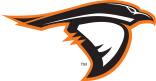 Anderson University Athletics