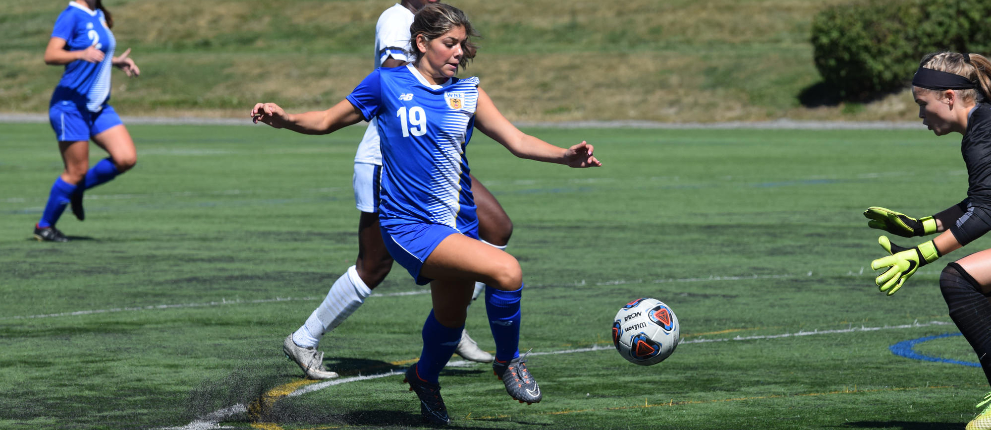 Freshman forward Vanessa Chiarella scored her first collegiate goal in Western New England's 5-3 loss at Salve Regina on Saturday. (Photo by Rachael Margossian)