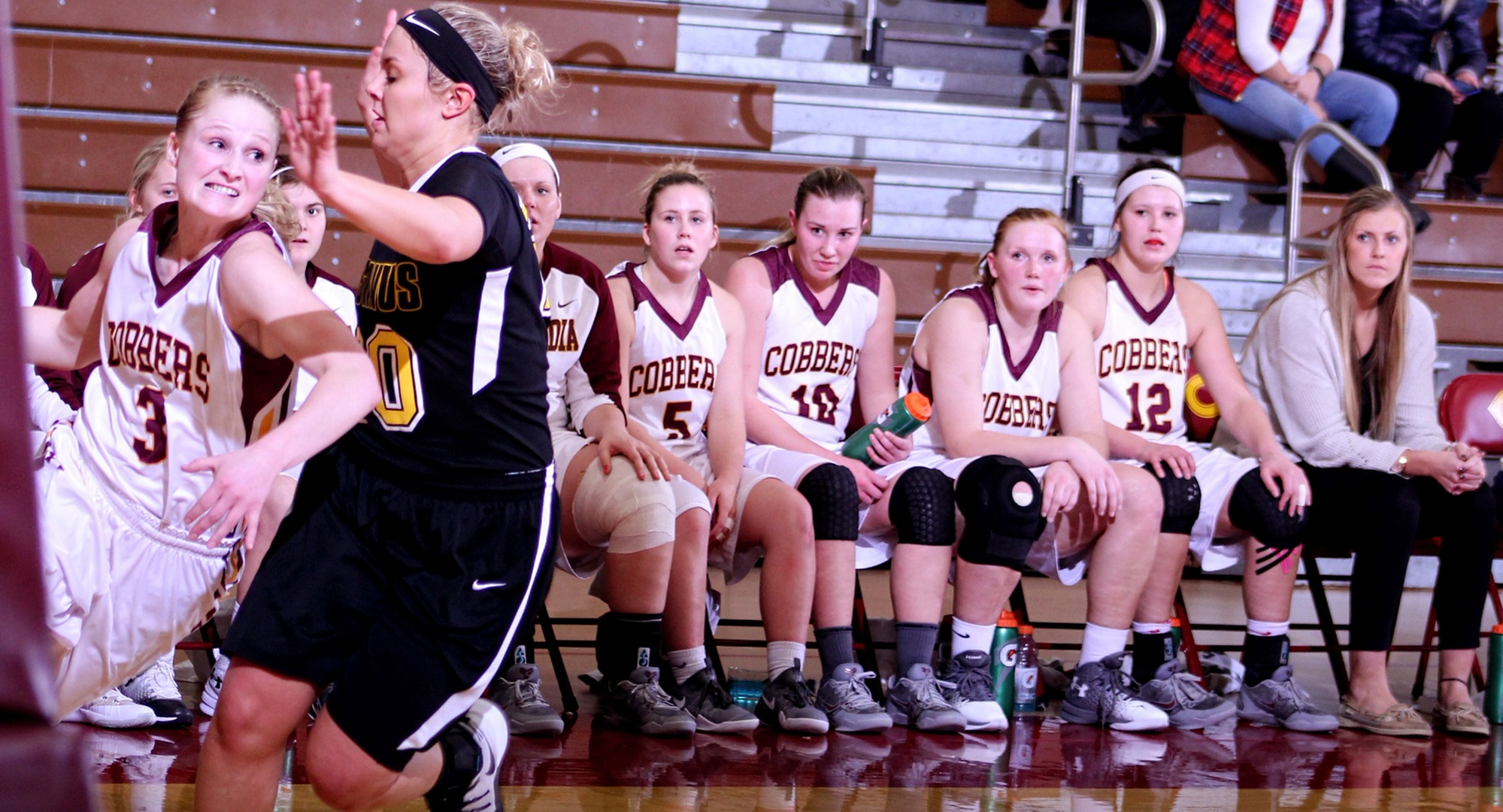 The Concordia bench watches senior Greta Walsh drive to the basket during the Cobbers' near upset over No.19-ranked Gustavus.