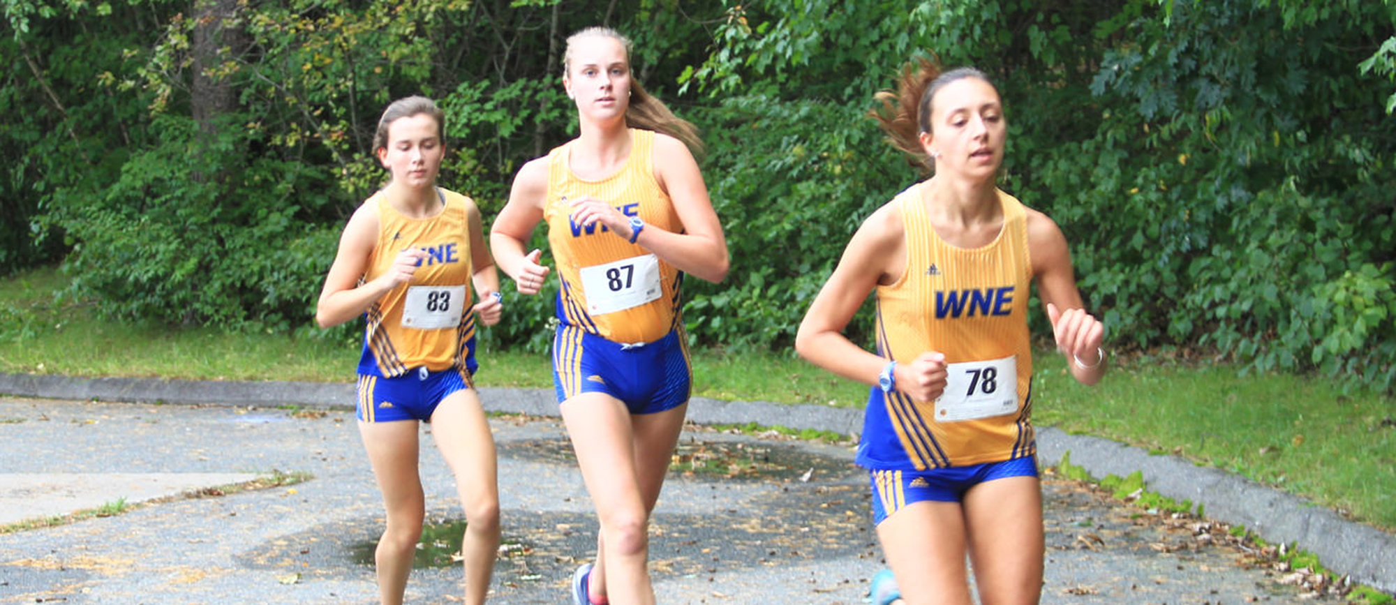 Townsend Leads Golden Bears at Western New England Invitational