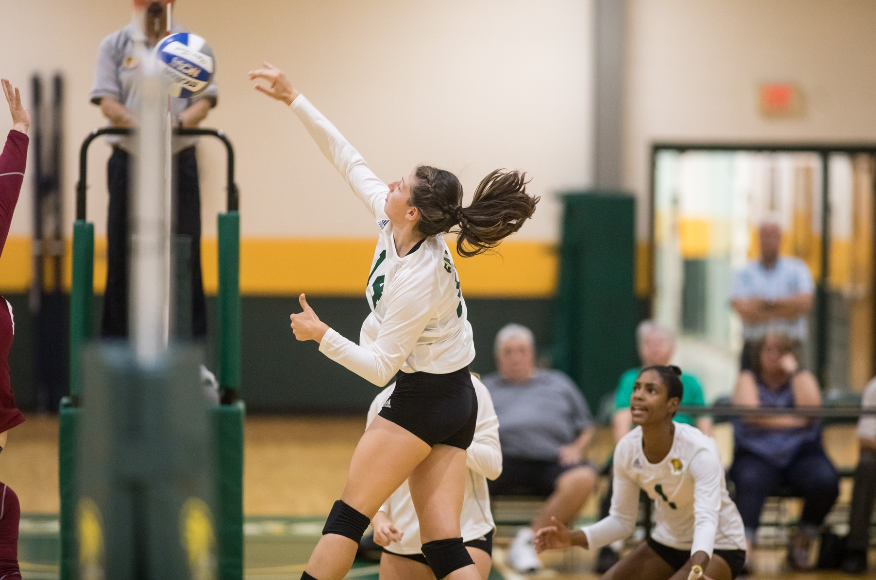 Falcons Defeated By Owls In Three Sets