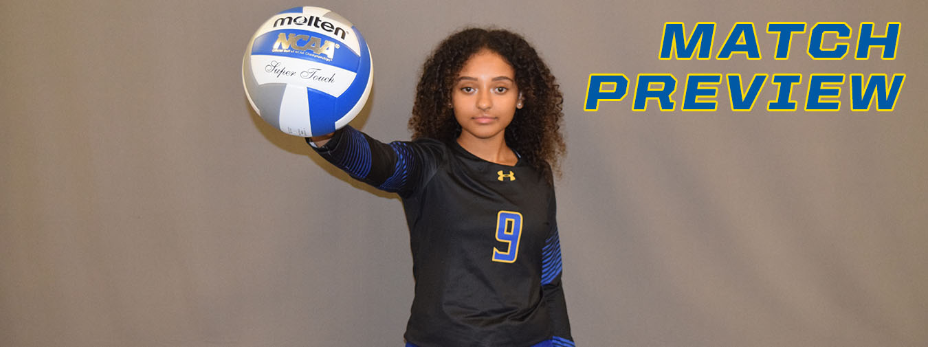 Goucher Women's Volleyball Returns To Landmark Action At Catholic On Wednesday