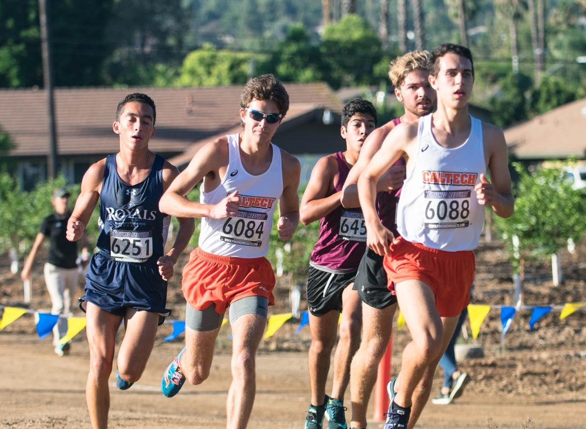 Men's Cross Country Jumps Into Regional Rankings