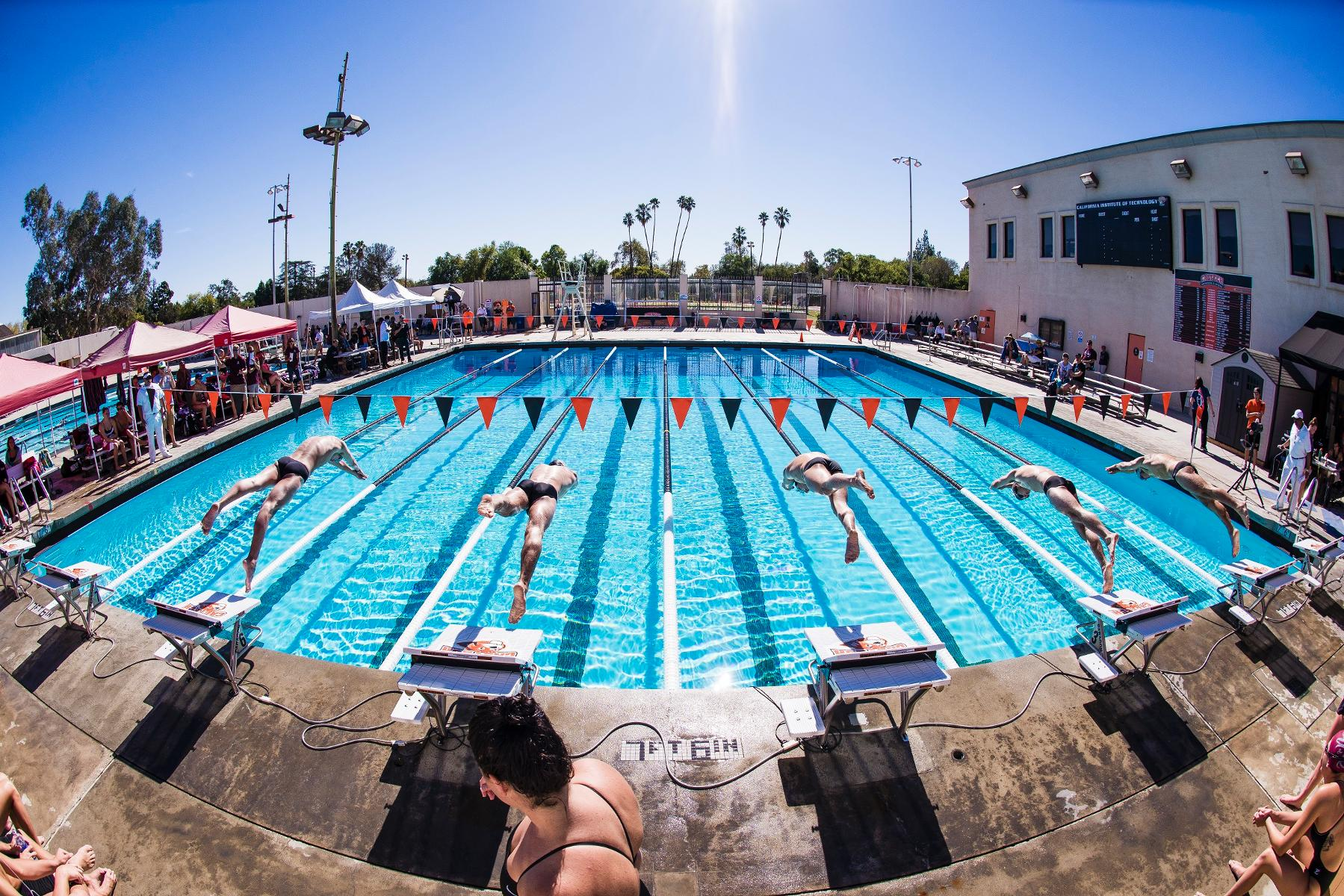 Swim & Dive Prepared for SCIAC Championships