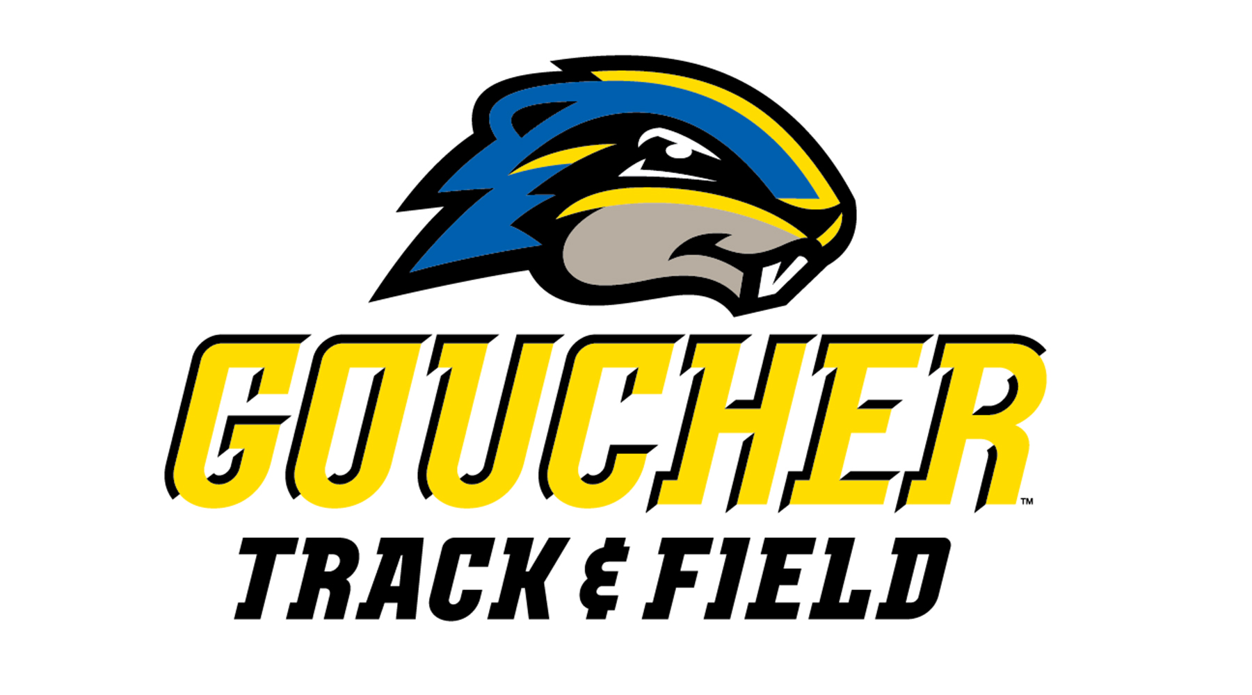 Remnants of Winter Storm Toby Wipes Away 2018 Goucher Track & Field Classic