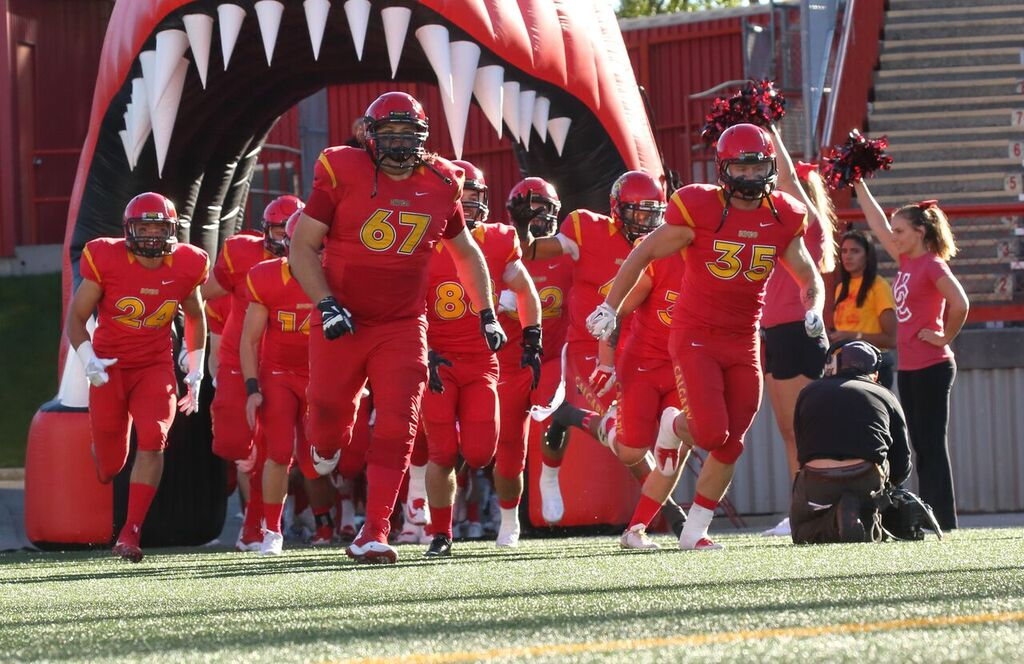 Coupe Mitchell: Calgary Dinos Profil d'équipe