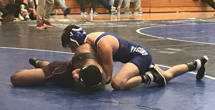 Wrestling competes at Al Hanke Invitational