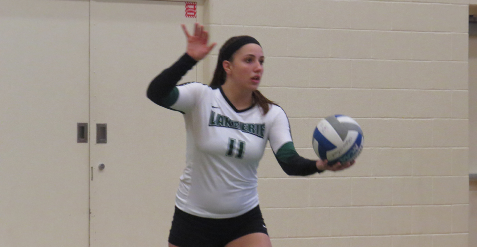 Lake Erie Falls to Cedarville