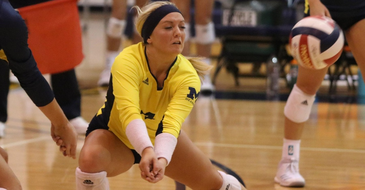 Wolverines fall to Gray Wolves in three