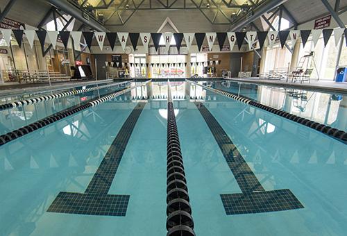 MSU Swim & Dive Earn CSCAA All-American Honors