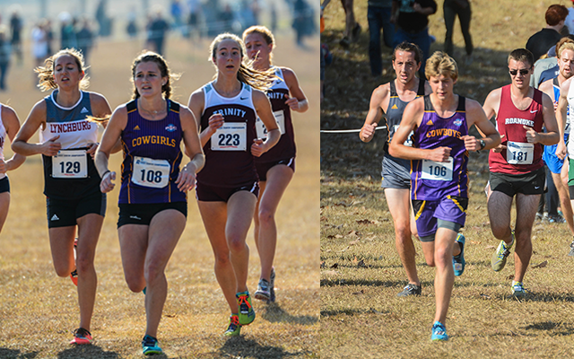 McEndree, Tencate Have Solid Runs at NCAA CC Regionals