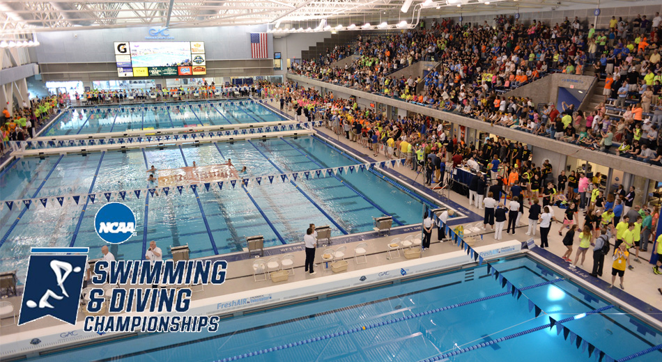 Preview: Blugolds set for 2019 NCAA DIII Swim & Dive Championships