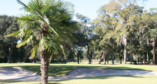 Carolina in my mind: Golden Eagles prep for Low Country Intercollegiate