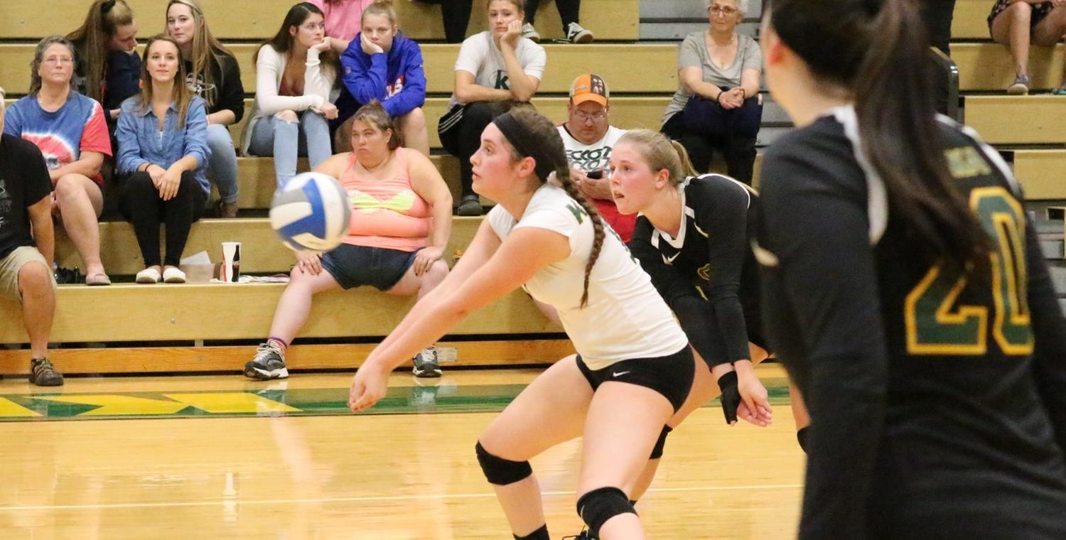 Emily Cottrell (10) had 17 digs for the Wolves on Wednesday -- Photo by Ed Webber