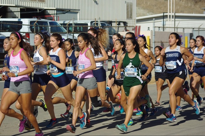 The Falcon women's cross country team took third at the SCC Finals
