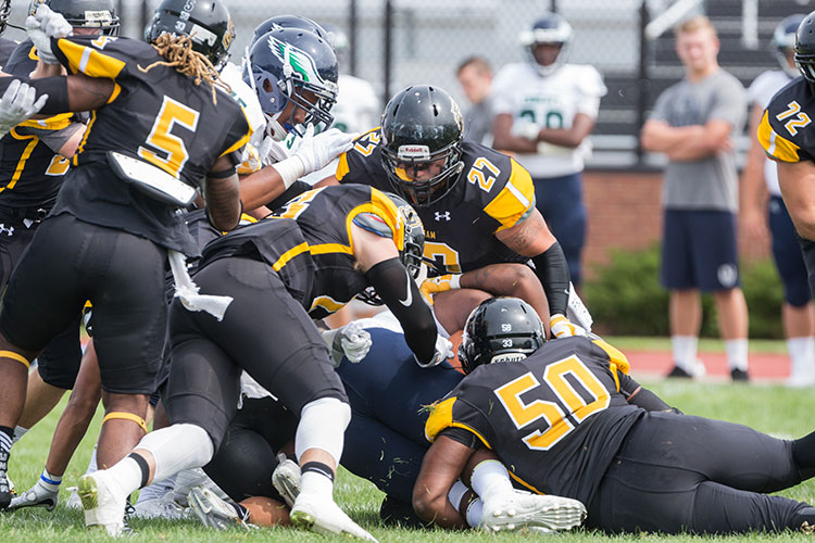 Defense Key as Football Rushes Past Cortland 29-14