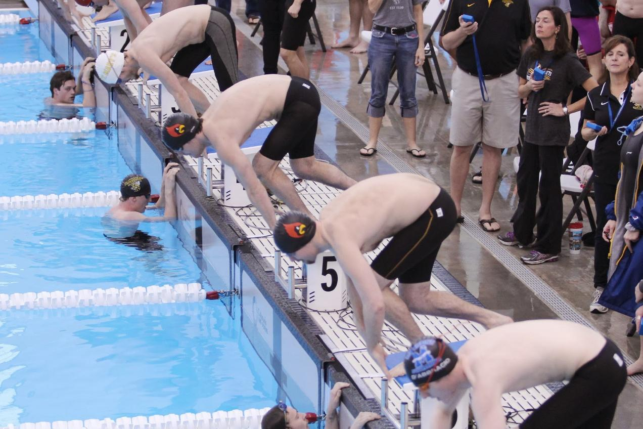 Landmark Swimming & Diving Championships: Day Two