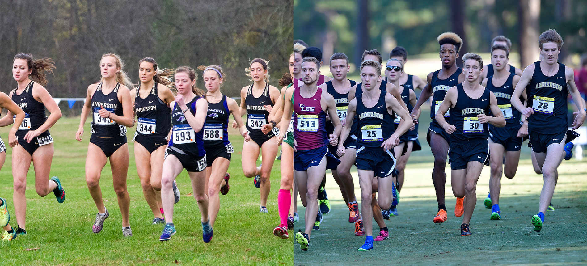 Cross Country Announces 2018 Slate