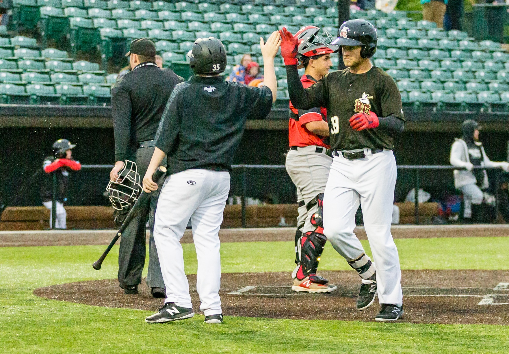 Rascals Blank Wild Things 9-0