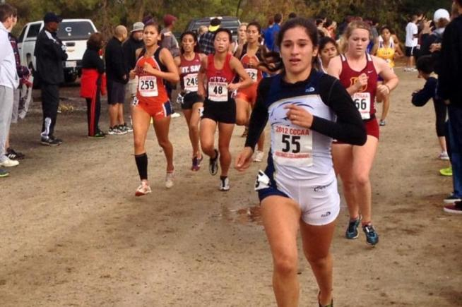 Karina Sanchez (55) helped Cerritos place sixth at the state championships.