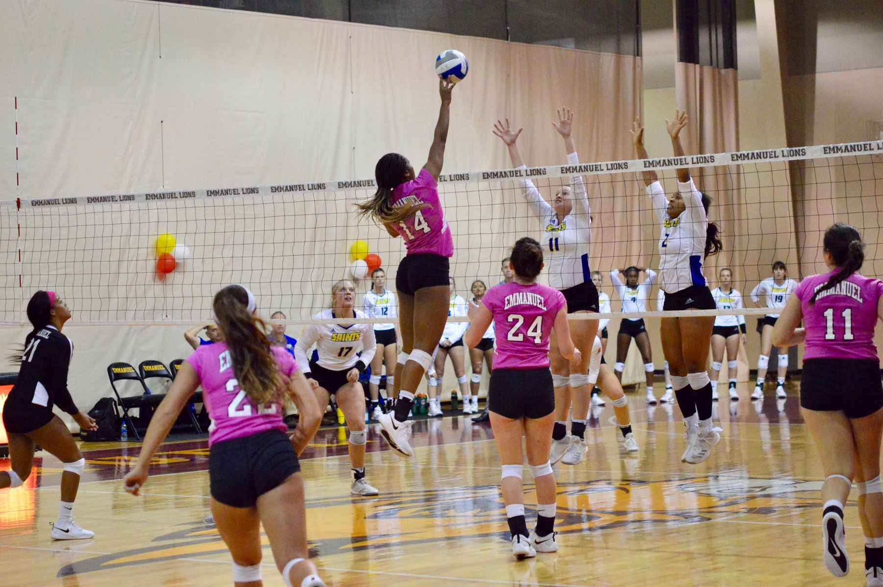 Women's Volleyball Continues Longest Winning Streak in Program History