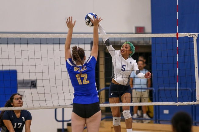 File Photo: Jackie Dixon had six kills for the Falcons