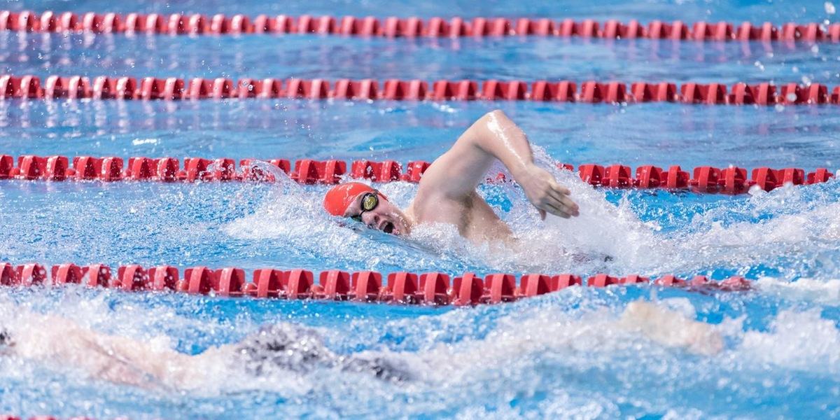 Men's Swimming and Diving Competes at Worcester City Championship