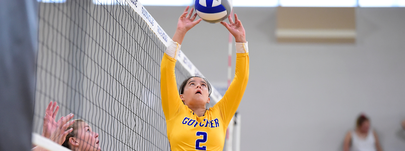 Goucher Women's Volleyball Falls In Straight Sets To McDaniel