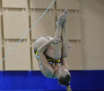 Wilde, Mathews Medal for Bentley in NEISDA 3-Meter Diving