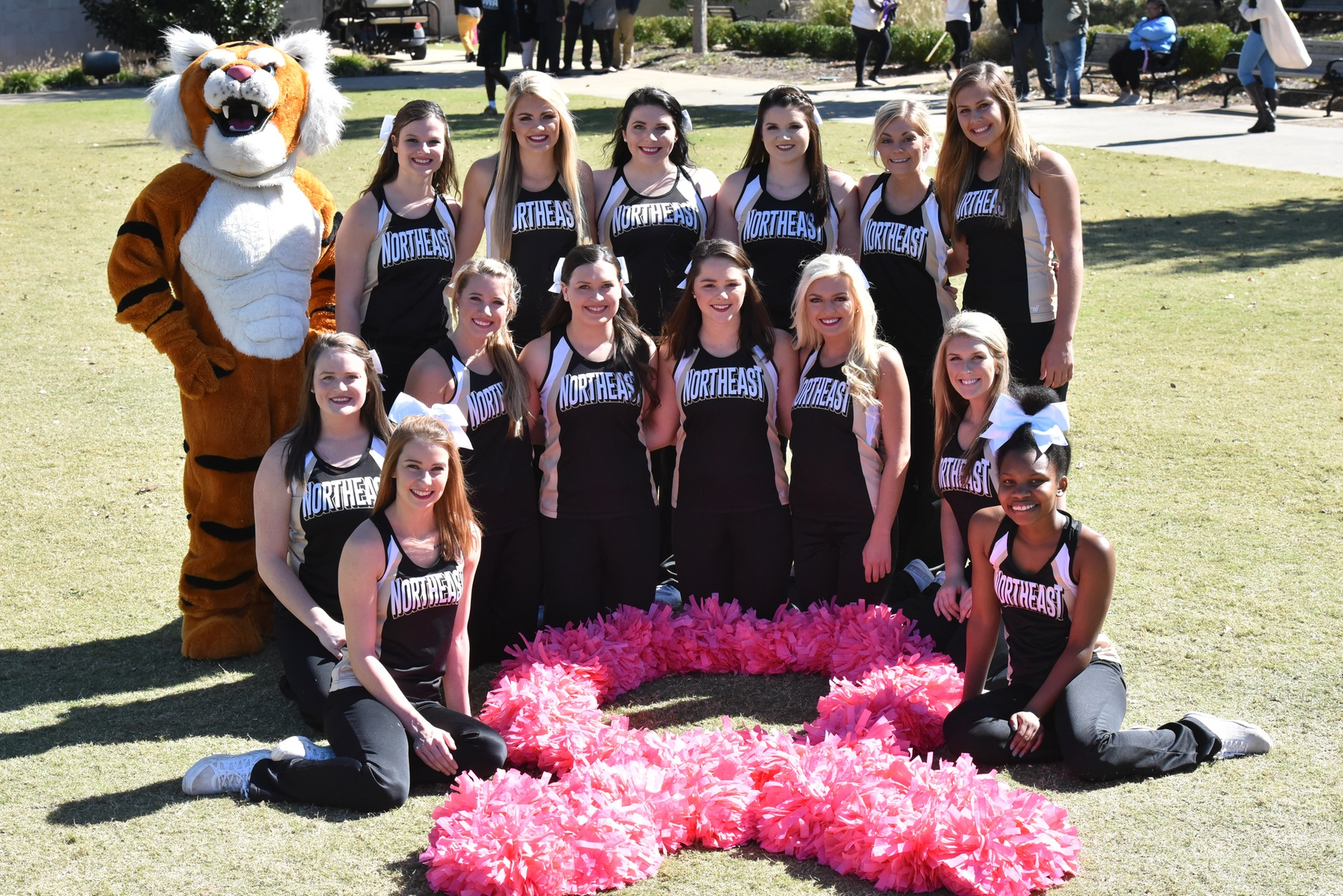 (PHOTO: Michael H. Miller/Northeast Public Information): Northeast Mississippi Community College's football team and cheerleaders (pictured) will don pink attire for its annual Breast Cancer Awareness Night on Thursday, October 11 against Jones College. Kickoff is scheduled for 6:30 p.m. at Tiger Stadium. It is the non-division finale for both teams.