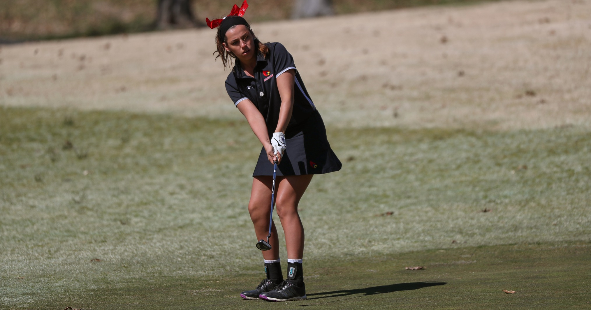Cardinals Place Eighth at Eagle Invitational