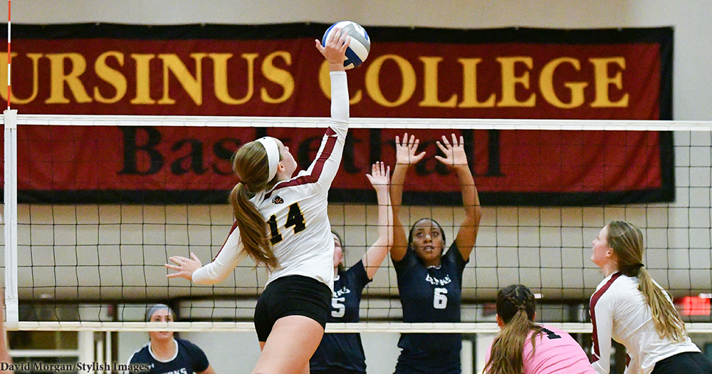 Volleyball Topped By Muhlenberg