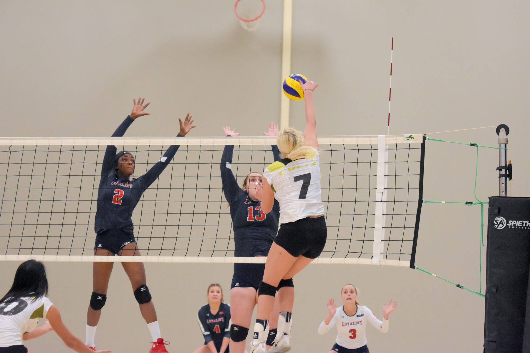 Centennial Colts outside hitter Mari Pikkov goes high up for a kill against two Lancers blockers. Despite a 2-0 lead, Centennial fell in five sets to still-undefeated Loyalist at Athletic and Wellness Centre. (Yvano Antonio/ Colts Athletics)
