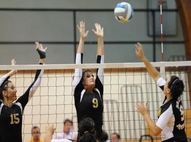 Volleyball Thrashes Agnes Scott in Home Finale, 3-0