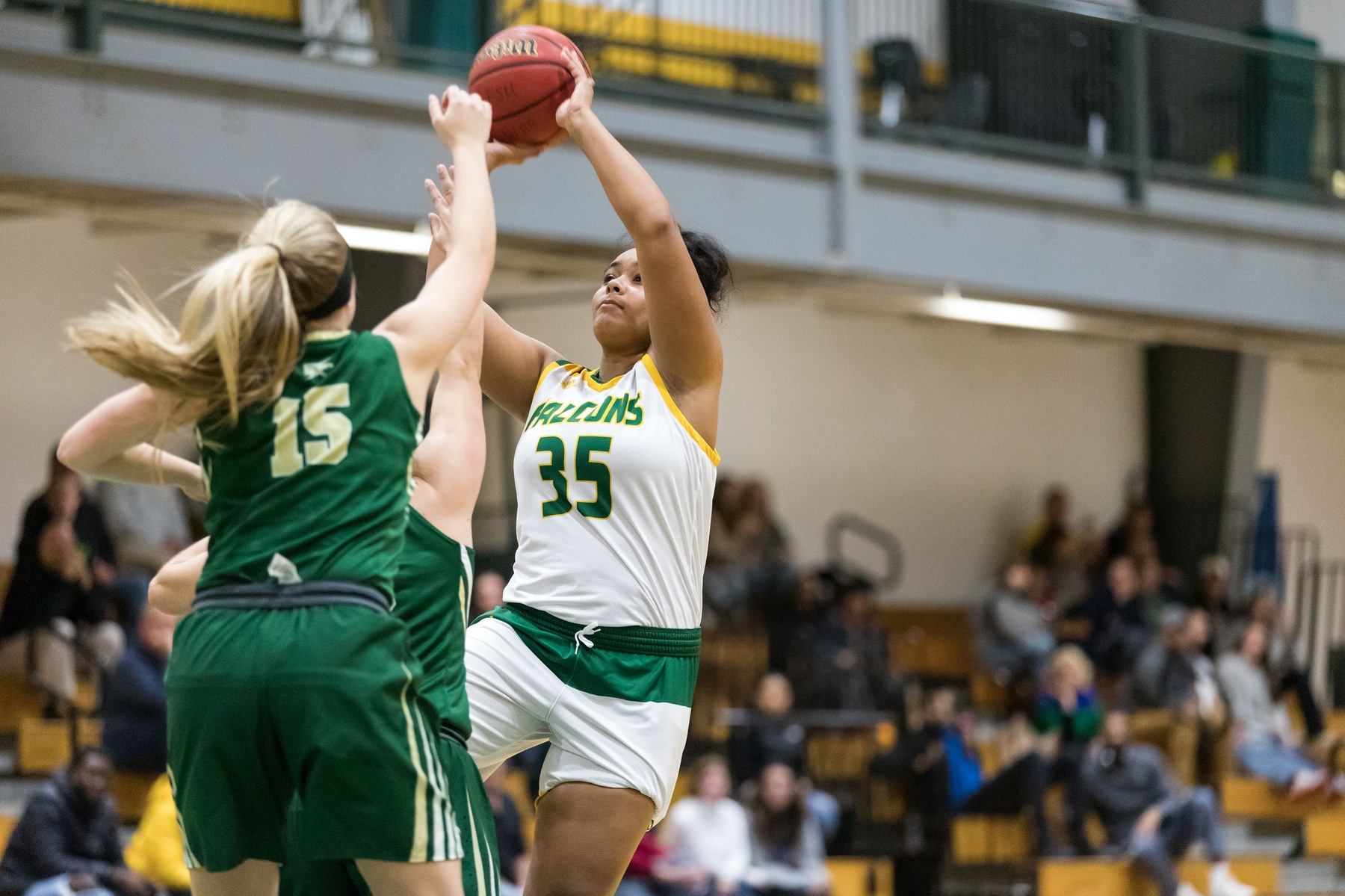 Falcons Fall to Worcester State