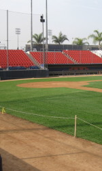 Goodwin Field Update