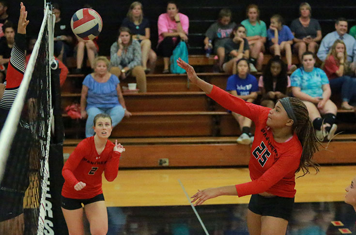 Volleyball: Panthers crush Wesleyan in USA South match for sixth straight win