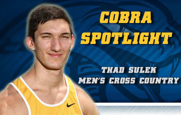 Cobra Spotlight- Thad Sulek, Men's Cross Country