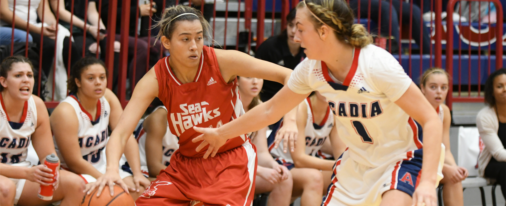 Sea-Hawks Drop Opener to Axewomen
