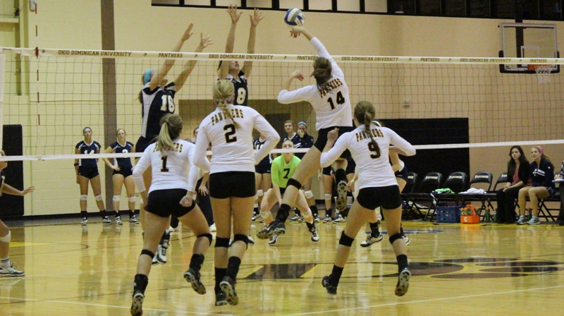Volleyball Falls in Four at Findlay