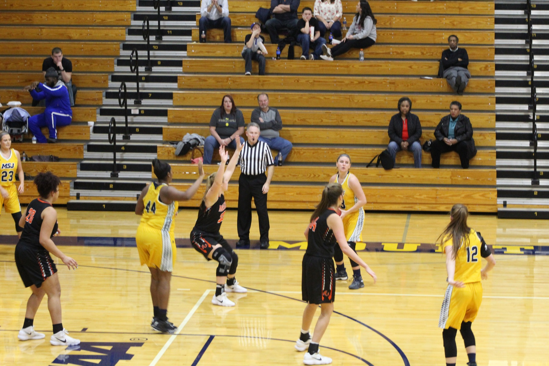 Lions fall in tough road loss against Transy