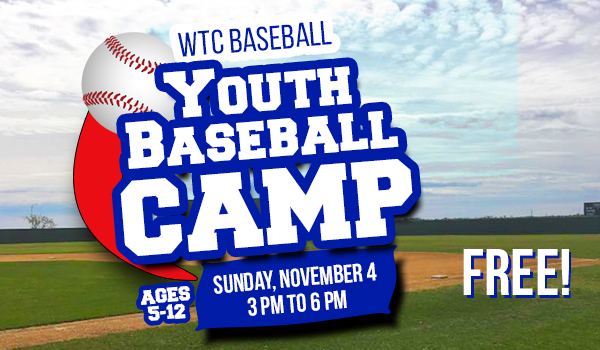 Youth Baseball Camp