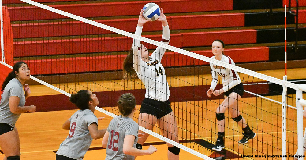 Volleyball Falls to Garnet in CC Opener