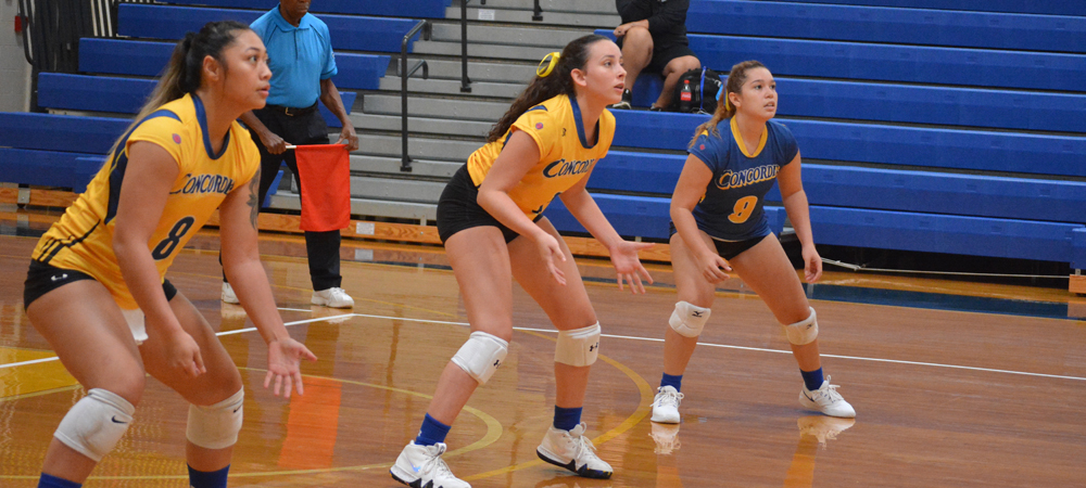 Women's Volleyball Travels To Queens Tuesday, Dominican Wednesday