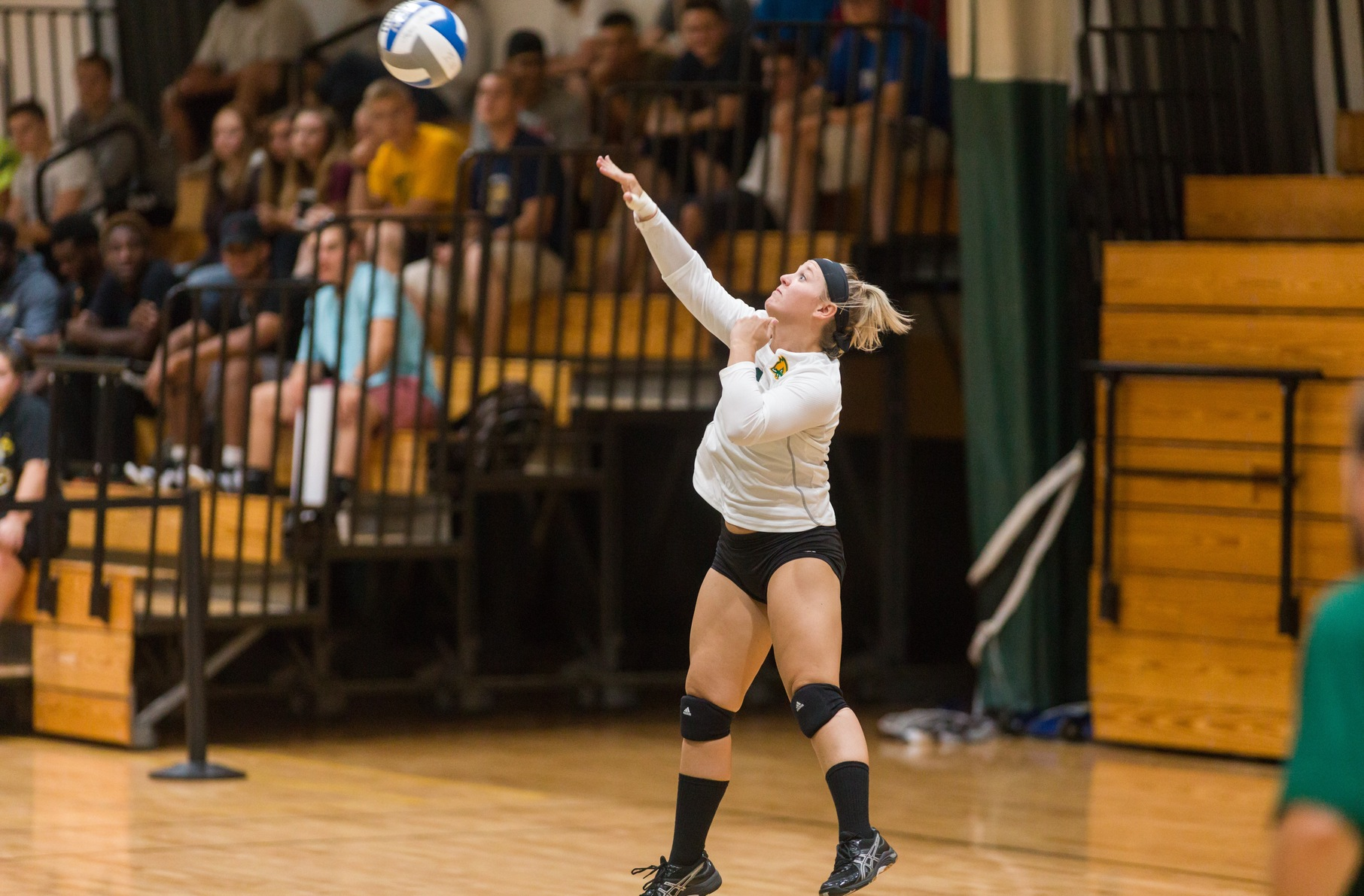 Falcons Compete In Tri-Match With Worcester State And Nichols