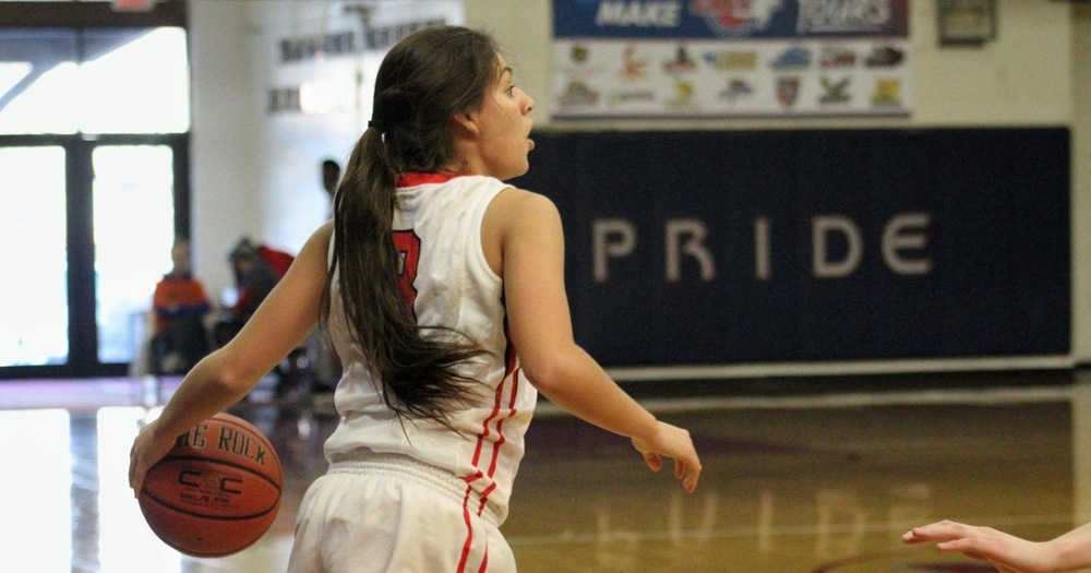 Women's Basketball Defeated by Chestnut Hill Griffins